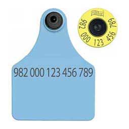 FDX EID Ear Tags + Large Blank Matched Set Blue - Item # 18395