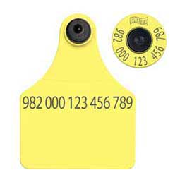 FDX EID Calf Ear Tags + Large Blank Matched Set Yellow 25 ct - Item # 18395