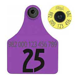 FDX EID Calf Ear Tags + Large Numbered Matched Set Purple - Item # 18397
