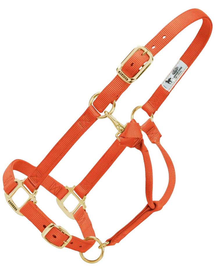 personalized hot horse halter weaver leather