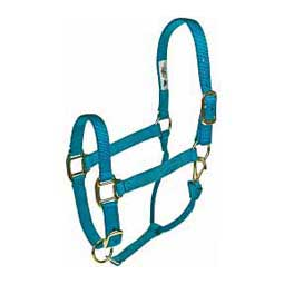 Personalized Hot Horse Halter Hurricane Blue - Item # 22892