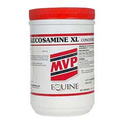Glucosamine XL Concentrate 16 oz (96 - 192 days) - Item # 24495