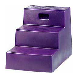 Purple 3 Step Mounting Step