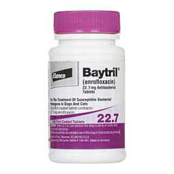 22.7 mg/100 ct Baytril Antibacterial Tablets for Dogs & Cats