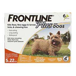 6 pk (8 weeks or older, up to 22 lbs) Frontline Plus for Dogs
