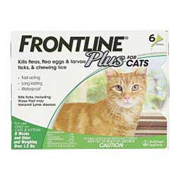 6 pk Frontline Plus for Cats