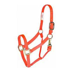 Premium Horse Halter w/Throat Snap Orange - Item # 31329