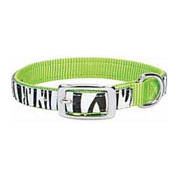 Untamed Nylon Dog Collar Lime Zest 1'' x 21'' - Item # 32790