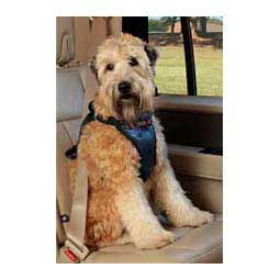 M (20-55 lbs) Deluxe Car Dog Harness