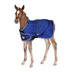 Navy/Tan Adjustable Foal Stable Blanket
