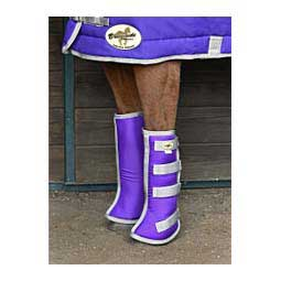Flared Horse Shipping Boots Purple/Silver - Item # 34651