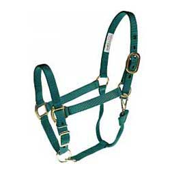 Personalized Horse Halter Teal - Item # 36963C