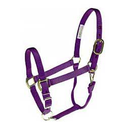 Brookside Personalized Horse Halter Purple - Item # 36963
