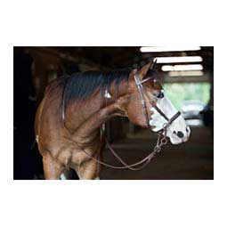 Beta-Bitless Horse Bridle Brown - Item # 38695
