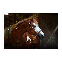 Leather Bitless Horse Bridle Brown - Item # 38697