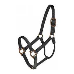 Black Antique Dot Halter