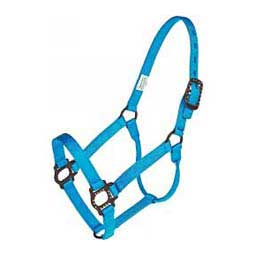 Antique Dot Horse Halter Aqua - Item # 39070