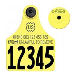 840 USDA Panel Numbered Large Cattle ID Ear Tags w/ Male Buttons Yellow - Item # 39586