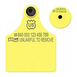 Yellow 840 USDA - Maxi Panel Blank ID Tags with Buttons