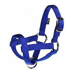 Nylon Goat Halter Blue Kid - Item # 40247