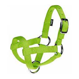 Nylon Goat Halter Lime Zest Kid - Item # 40247
