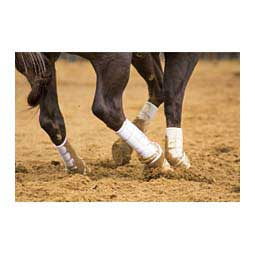 Iconoclast Tall Hind Ortho Horse Boots White - Item # 40832