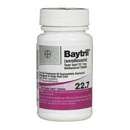 Baytril Antibacterial Taste Tabs for Dogs and Cats 22.7 mg/100 ct - Item # 409RX