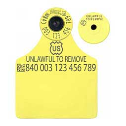 840 USDA All-in-One FDX EID Blank Ear Tags Yellow 25 ct - Item # 41041