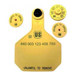 840 USDA FDX EID Ear Tags + Large Blank Matched Set Yellow - Item # 41505