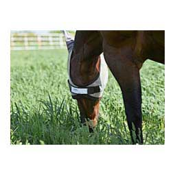 Pro-Force Fly Mask with Ears Horse (900-1200 lbs) - Item # 41993