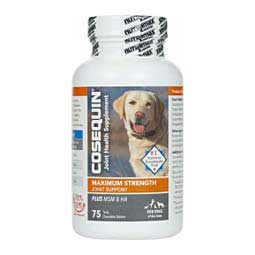 Cosequin DS Maximum Strength Plus MSM & HA for Dogs 75 ct - Item # 43849