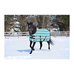 SuperMesh SureFit Medium Weight Turnout Horse Blanket Black Ice - Item # 44098