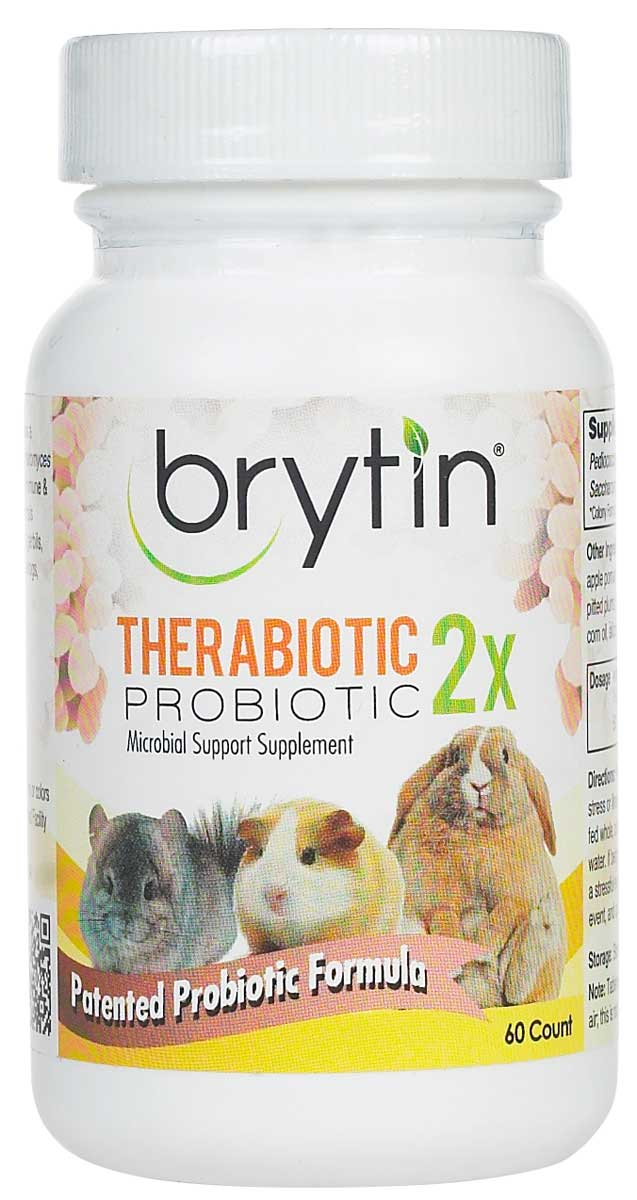 Chinchilla For Sale >> Brytin TheraBiotic 2x Probiotic Supplement for Rabbits, Chinchillas, and other Small Animals 60 ...