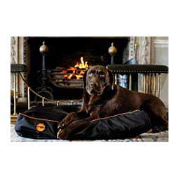 "Rambo Ionic Dog Bed Black/Orange S (24"" x 19"" x 5.5"") - Item # 44748"