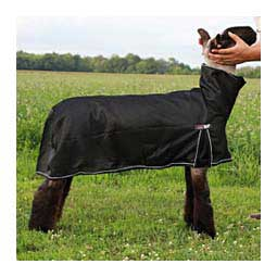 Cool Tech Cooling Blanket for Sheep Black - Item # 45241