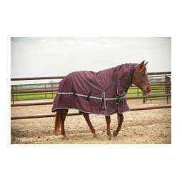 5K Cross Trainer Turnout Horse Blanket w/ Hood Eggplant - Item # 45306