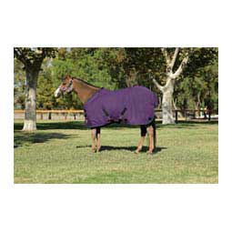 Pony All Around Heavy Weight Turnout Blanket Kensington