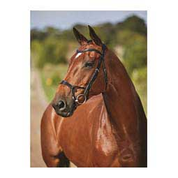 Collegiate Comfitec Training Bridle Black - Item # 45898