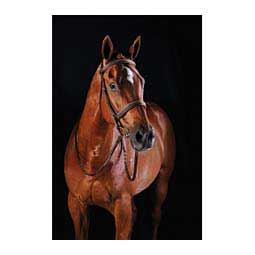 Collegiate Comfort Crown Fancy Stitched Raised Caveson Bridle Brown - Item # 45904