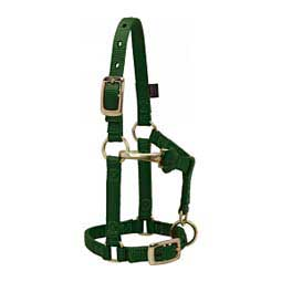 Mini Nylon Halter Hunter Green - Item # 46074