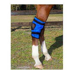 Equi Cool Down Hock Wraps for Horses Blue - Item # 46176