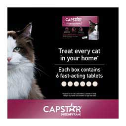 Capstar Flea Tablets for Cats 6 ct (2-25 lbs) - Item # 46269