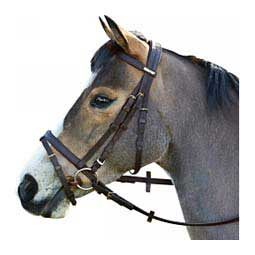Wintec Bridle With Flash Brown - Item # 47304