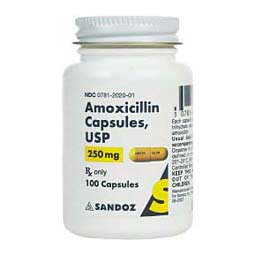 250 mg/100 ct Amoxicillin Capsules for Dogs and Cats